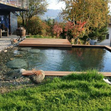 Petite piscine bio
